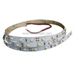 DC12V 24V led strip series